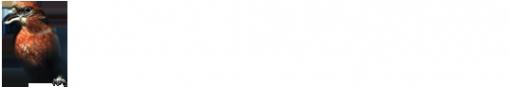 Логотип компании Аккумуляторный Дом