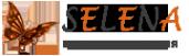 Логотип компании Арт-Селена